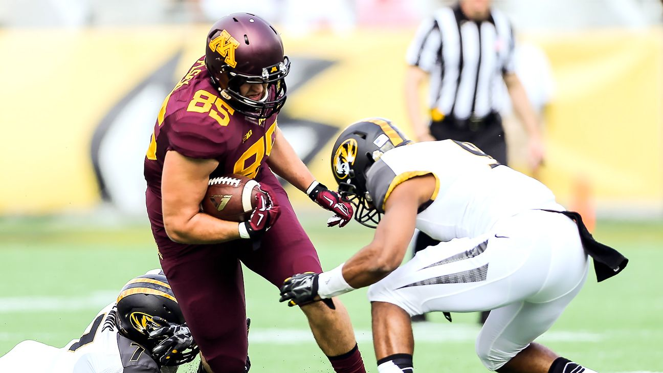 Hometown Tragedy Lends Perspective To Minnesota Te Lincoln