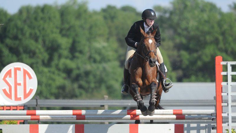 Equine Studies all college majors