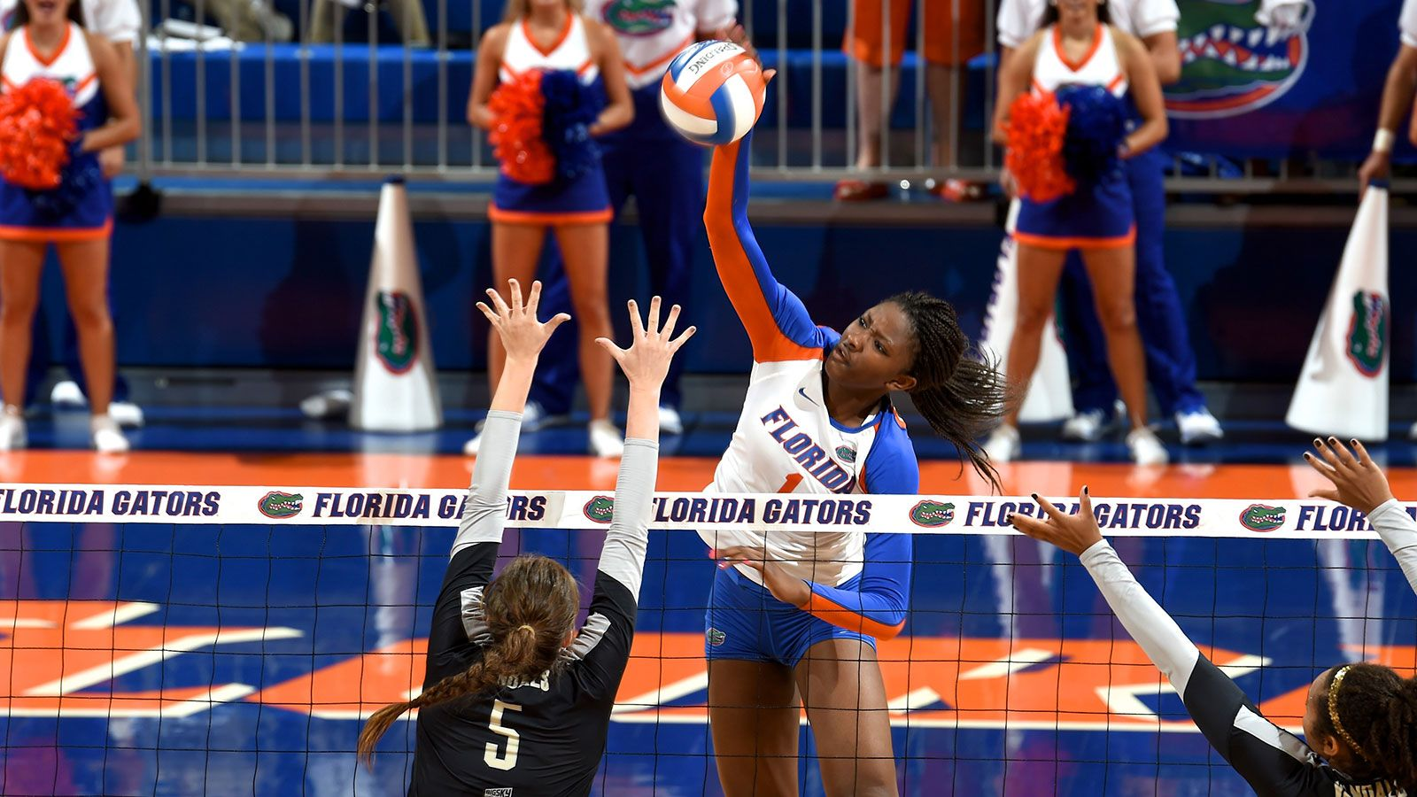 SEC student-athletes claim 23 on AVCA All-Regions