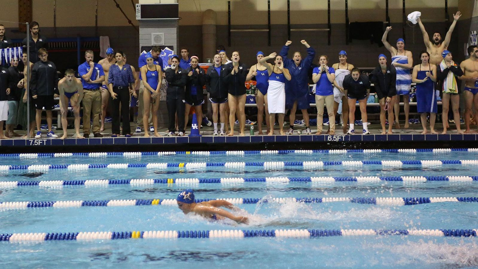 Kentucky notches nine individual wins vs. Louisville