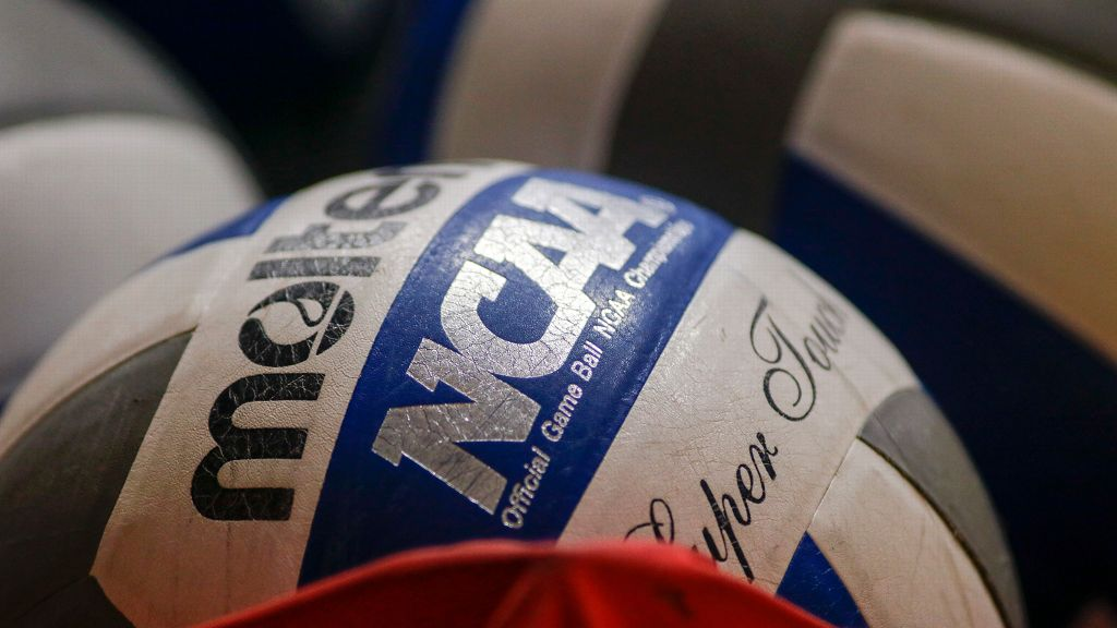 SEC volleyball programs advance to postseason play