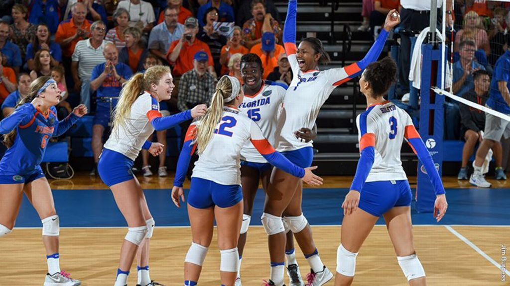 SEC student-athletes earn AVCA honors
