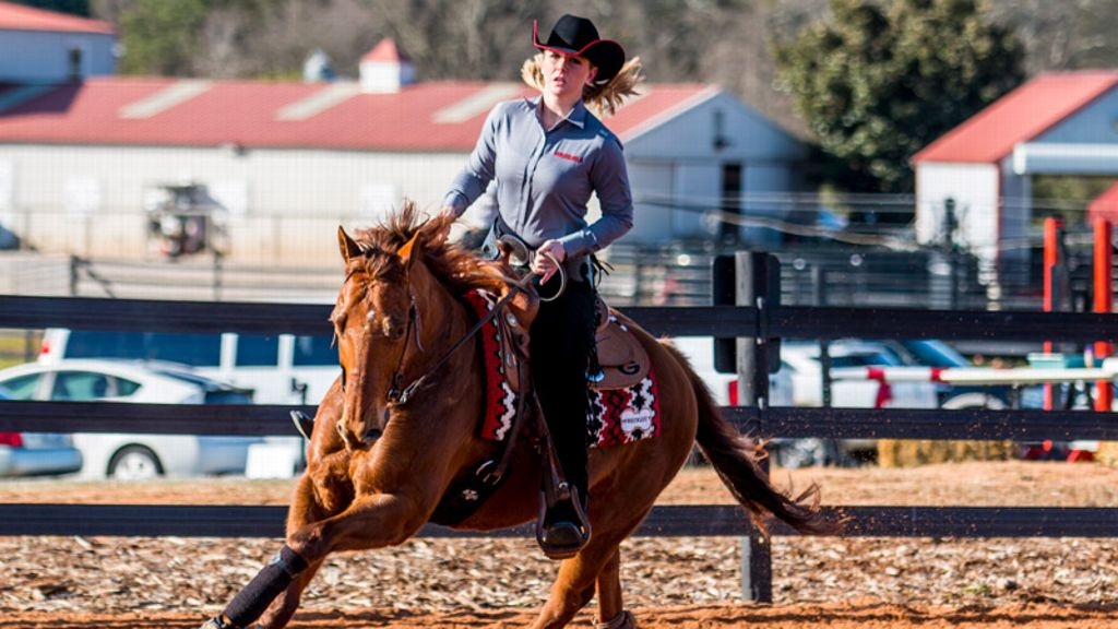 UGA's Harper named NCEA Reining Rider of the Month