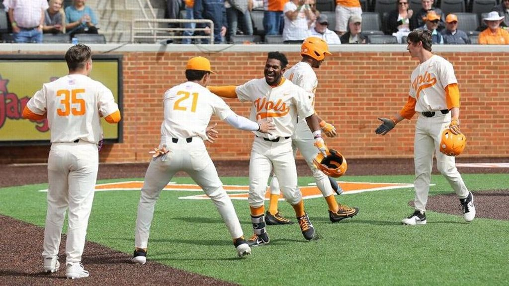 Vols blow out Gamecocks 15-5