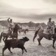 Malloy brothers, ranchers