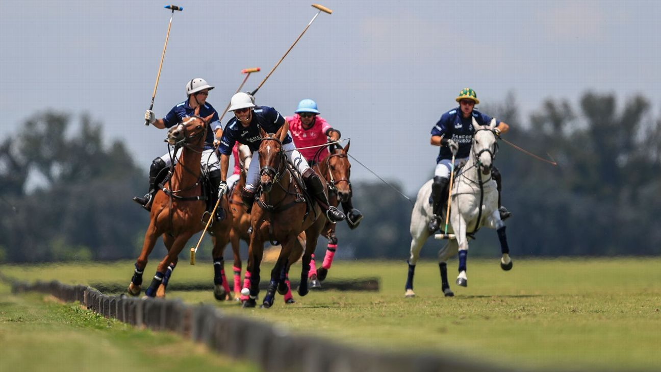 LA DOLFINA POLO RANCH 15  ALEGRÍA 11
