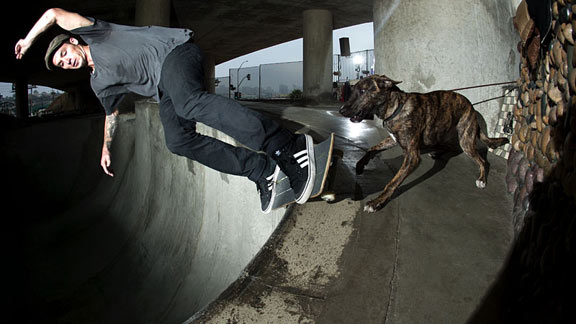 Tyler pushes a feeble grind through the corner with the added hazard of a dog on the deck.
