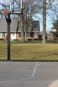 Basketball hoops are more prevalent in Indiana than the state tree.
