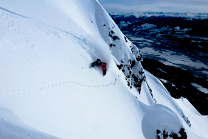 It performs great in wide open powder but is also amazingly easy to turn in steep technical terrain. -- Bibi Pekarek