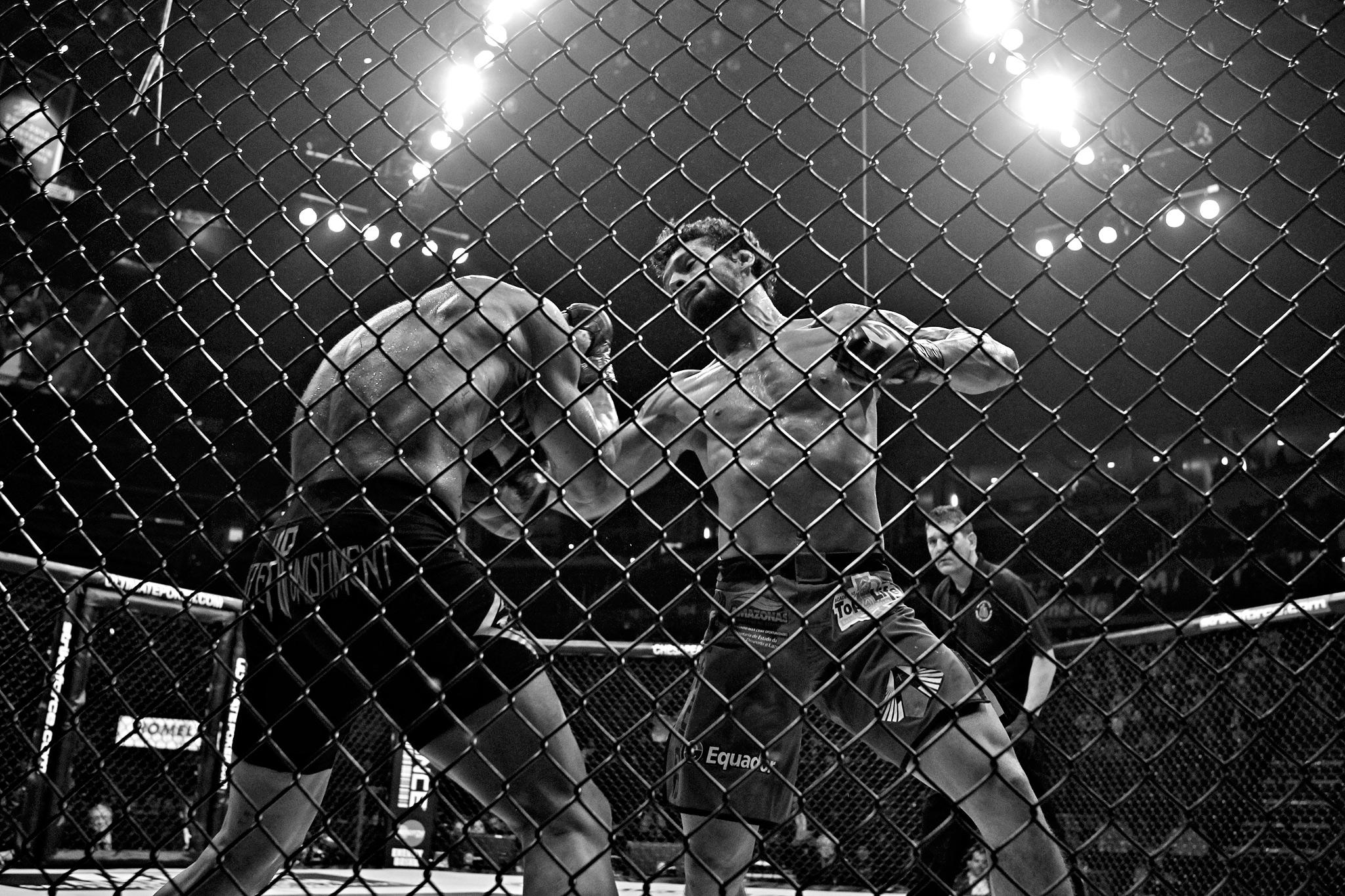 Jorge Gurgel vs. Adriano Martins