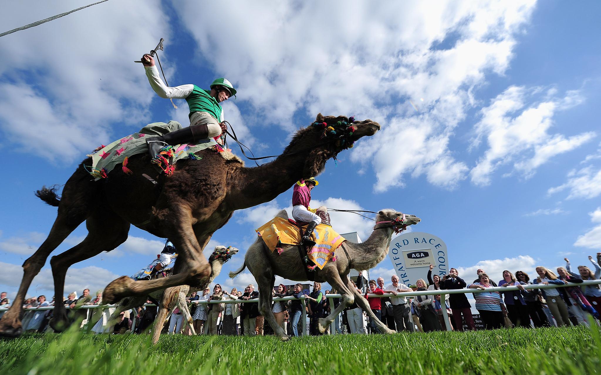 Kentucky Camel Derby