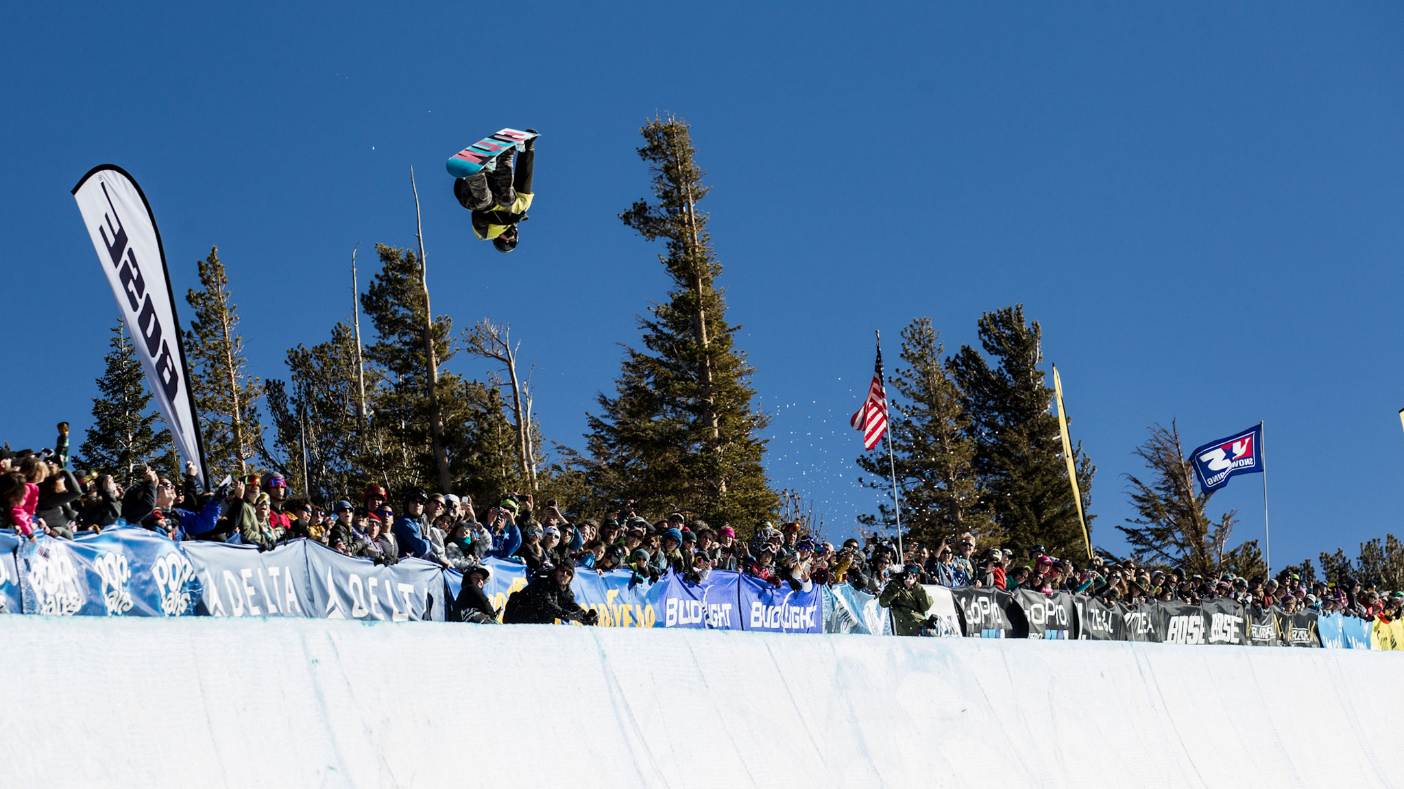 Taylor Gold, Halfpipe