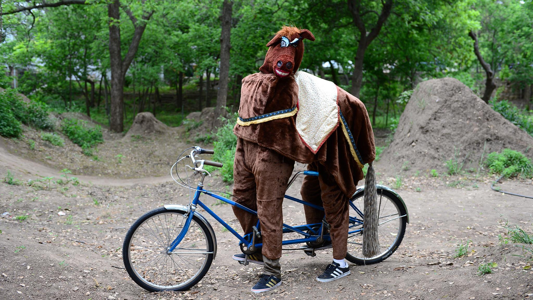 Tandem horse