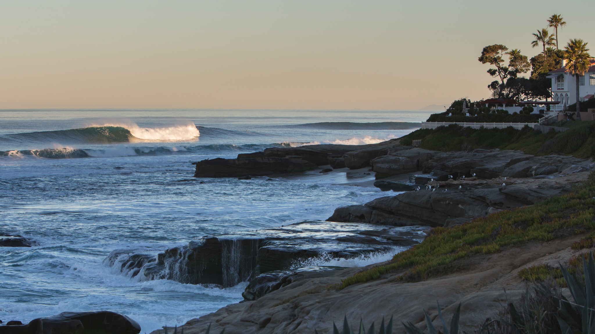 A stone's throw from Mitt Romney's California digs, La Jolla's reefs are a haven for San Diego surfers in the wintertime.