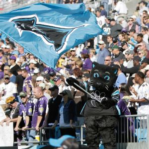 How does a boy from Houston become a fan of the Carolina Panthers? Because of Sir Purr, of course.