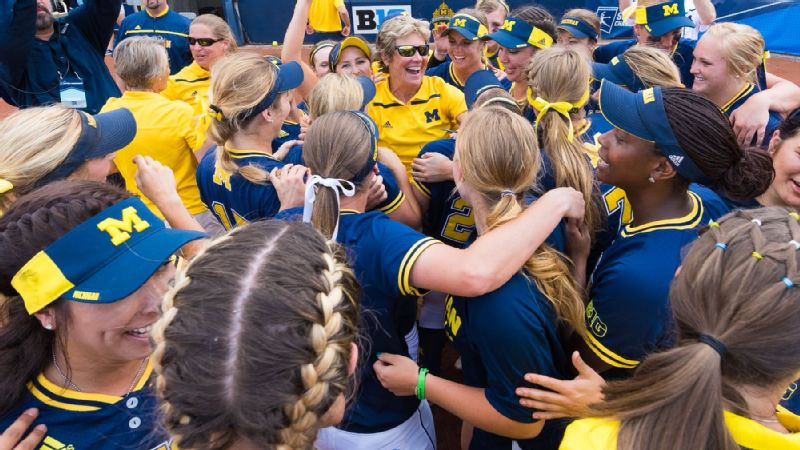 Michigan softball celebration