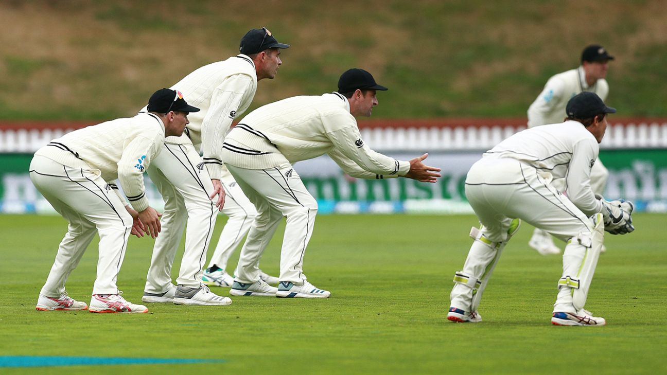 New Zealand vs Bangladesh 2nd Test Day 5 Highlight