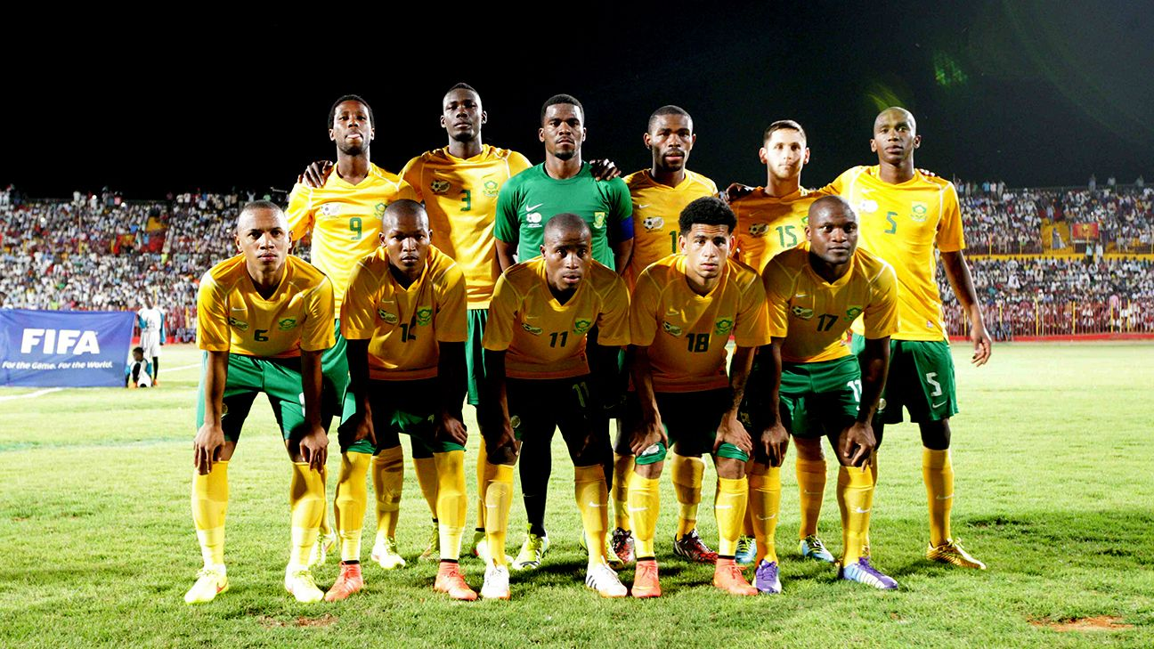 8ed029f1301f South Africa seal progress to 2015 African Nations Cup with win over Sudan