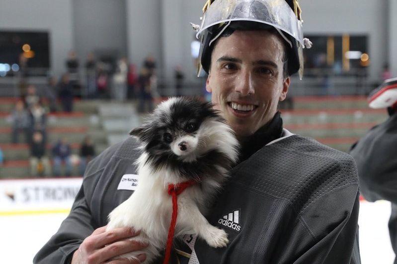 NHL - Vegas Golden Knights help get 164 abandoned