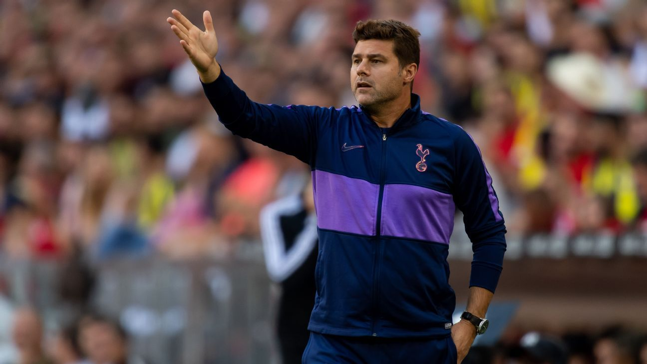 Spurs are in the title race with City - Poch