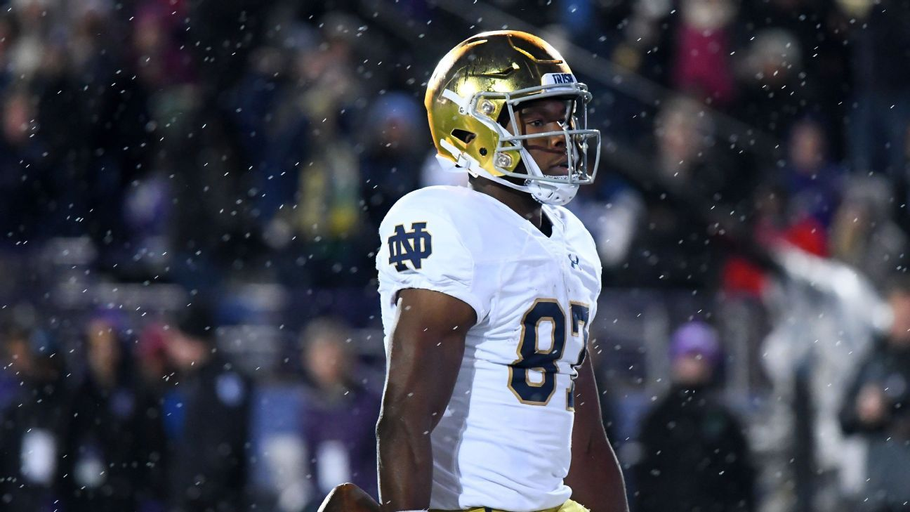 Notre Dame WR Michael Young has entered transfer portal