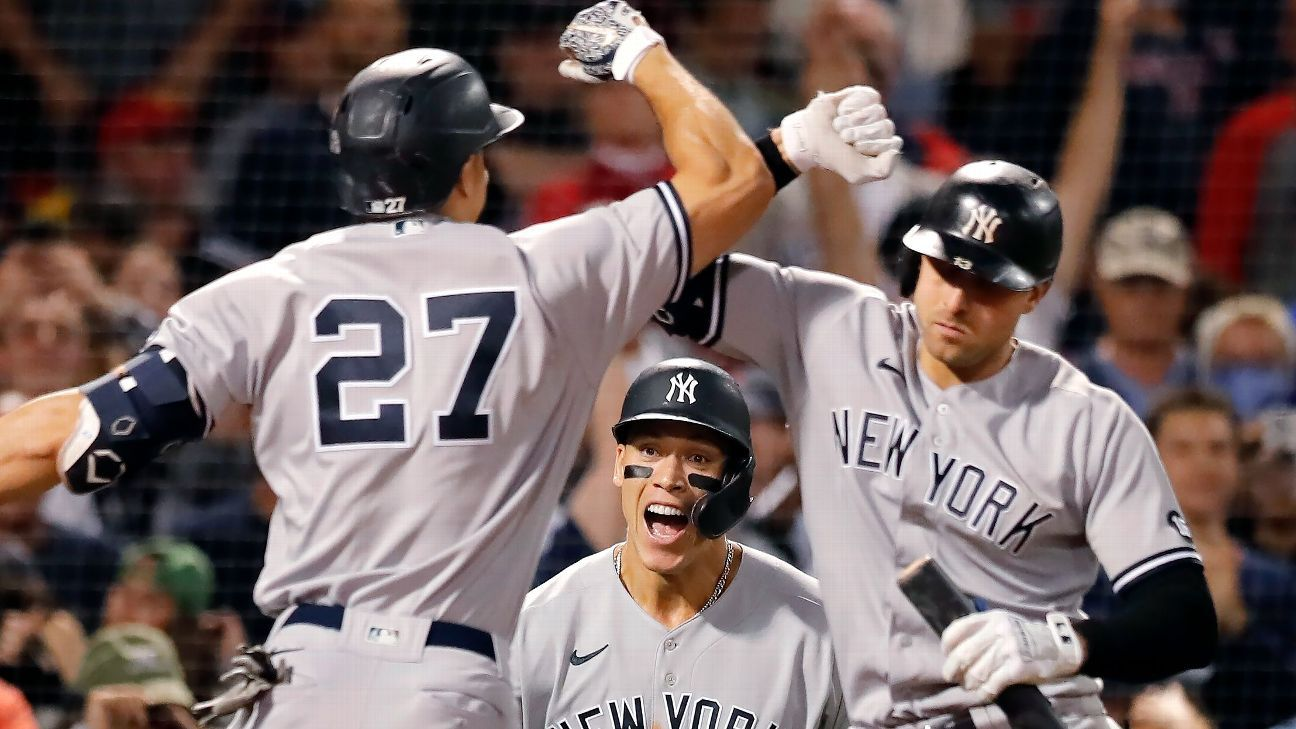 The secret behind the Yankees' playoff push is … a turtle?